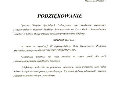 Polskie Stow Na Rzecz Osób z Uposledzoniem Umysł 2013